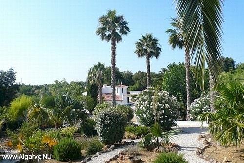 De tuin naar het noorden van Vila Maria.