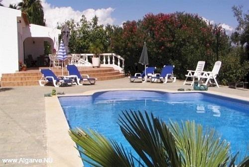 Een foto van het zwembad met parasol en ligstoelen.